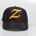 ZEUS5